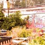 0 DK Aneignung guerilla gardeninge _ip_ps